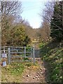 SO8180 : Public footpath (& restricted byway) from Kingsford Lane by P L Chadwick
