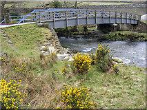 SH5947 : Footbridge and railway bridge over the Glaslyn by Phil Champion