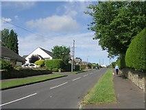 SE1421 : Lyndhurst Avenue - Lyndhurst Road by Betty Longbottom