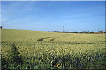 TR2954 : Crop field off Heronden Road by Oast House Archive
