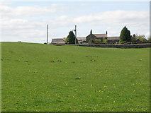 NZ0168 : The Vallum east of Carr Hill Farm (2) by Mike Quinn