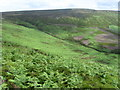 SK1697 : Across Stainery Clough by Chris Wimbush
