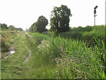 N7841 : Royal Canal Northeast of Enfield, Co. Meath by JP