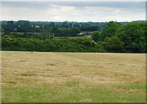 N5643 : Field near Cappaboggan, Co. Meath by Dylan Moore