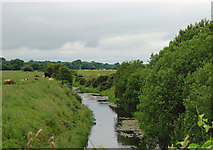 N5540 : Mongagh River from Baltinoran Bridge by Dylan Moore