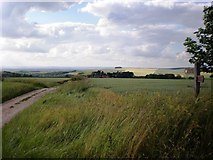 SE8665 : Over the Wolds! by Dr Patty McAlpin