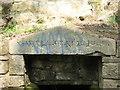 NZ2665 : Inscription on Ye Well of King John by Mike Quinn
