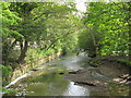 NZ2665 : The Ouse Burn, Jesmond Vale (3) by Mike Quinn