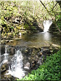 NY9038 : Waterfalls on Middlehope Burn (2) by Mike Quinn