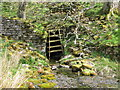 NY9039 : Old mine level, Middle Hope by Mike Quinn