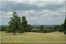 TQ1352 : View From Polesden Lacey by Peter Trimming