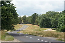 TQ1350 : Ranmore Common Road, Surrey by Peter Trimming