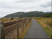 SH6214 : The Mawddach Trail by SMJ