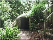 ST0642 : St Decuman's holy well by Sarah Charlesworth