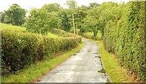 J3558 : The Bresagh Road near Boardmills by Albert Bridge