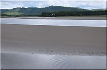 SD3283 : Levens Estuary by Mike Green