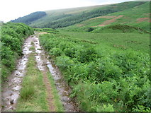 SK1695 : Footpath near Cranberry Bed by Chris Wimbush