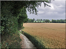 TR0047 : North Downs Way near Eastwell Park by Andy Stephenson