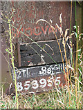 TG3204 : Ex railway goods van at Broad Hall Farm (detail) by Evelyn Simak