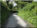 SN1306 : Lane To Sardis by Peter Whatley
