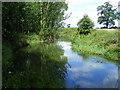 SP3396 : The River Anker by Stuart Shepherd