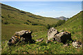 NN0935 : Boulders in Glen Liver by Walter Baxter