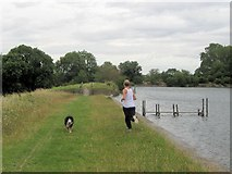 SP9113 : Running on the Dam at Tringford Reservoir by Chris Reynolds