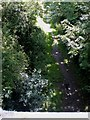 TA0042 : The Hudson Way near Cherry Burton by Dr Patty McAlpin