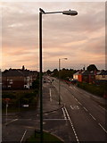 SZ0894 : Ensbury Park: pigeon on lamppost in Boundary Road by Chris Downer