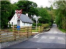 SH5946 : Welsh Highland Railway , Nantmor by Nigel Mykura