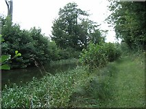 N7241 : Royal Canal South of Moyvalley, Co. Kildare by JP