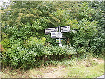 TM3464 : Roadsign on the B1119 Low Road by Adrian Cable