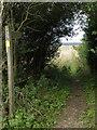SE9557 : Bridleway near Wetwang by Dr Patty McAlpin