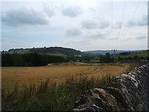 SK2171 : Fields in Hassop Park by Peter Barr