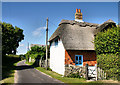 SZ3695 : Cottage, Tanners Lane by Pierre Terre