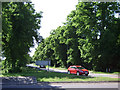 SP4173 : Avenue of limes, A45 eastbound by Robin Stott
