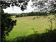 TG3204 : Hay meadow south of New Inn Hill by Evelyn Simak