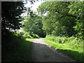 TQ3829 : Sussex Border Path approaching Broadhurst Manor by Dave Spicer