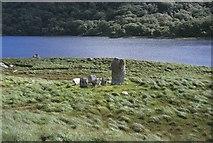 V8363 : Uragh Stone Circle by Nigel Cox