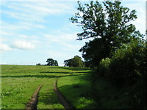 SX9896 : Farm track and public footpath by Rob Purvis