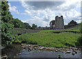 NY5415 : River Lowther by Dennis Turner