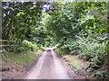 TM3859 : Wadd Lane, Gromford by Geographer