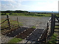 TQ4730 : Cattle Grid, north of Dunkeswell, Ashdown Forest, Sussex by nick macneill