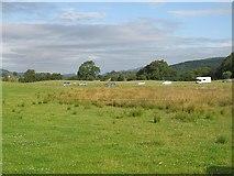 NO0051 : Wetland, Baledmund by Richard Webb