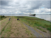 TA0623 : On the Humber Bank at Barrow Haven by David Wright