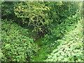 TA2338 : Lambwath Stream by JThomas