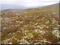 NH8513 : Old track on Geal-charn Beag by Dorothy Carse