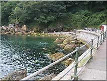 SX9364 : Anstey's Cove, Torquay by Roger Cornfoot