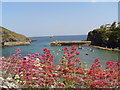 SW9981 : Overlooking Port Isaac Harbour on a warm sunny day by Amanda King