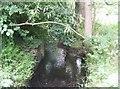 SJ8802 : River Penk upstream of Barnhurst Lane by John M